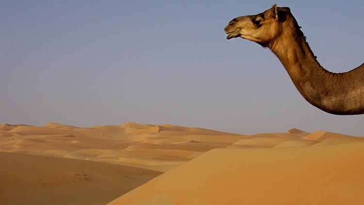 ¿Un monte como caído del cielo? Emiratos Árabes Unidos creará una montaña artificial para que llueva
