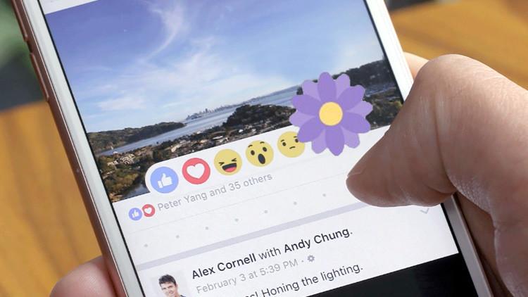 Descubra el significado del experimento de la flor morada de Facebook