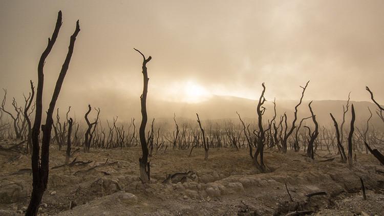 """Temperaturas globales: la NASA advierte de un record """"alarmante"""" 5739e043c36188be7e8b45b1"""