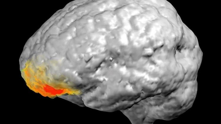 Médicos descubren cómo funciona el cerebro durante una 'revelación divina'
