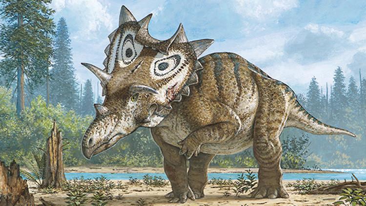 EE.UU.: Un físico jubilado descubre por accidente una nueva especie de dinosaurios