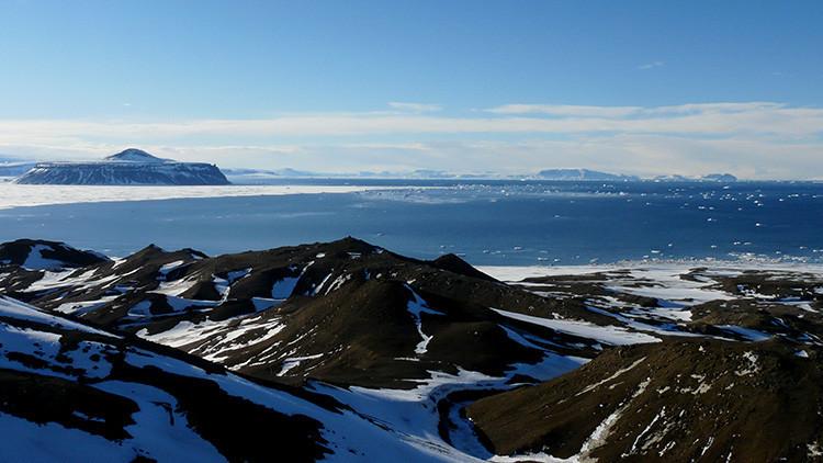 Hallan restos de un ave gigante que vivió hace 50 millones de años en la Antártida