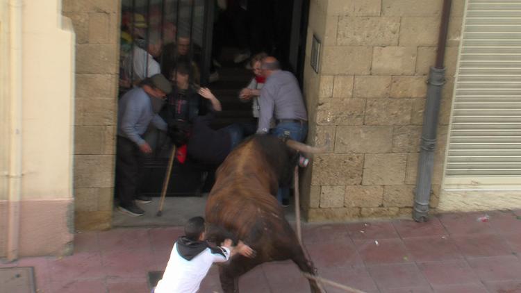 España: Hospitalizan a 4 personas que corrían delante de un toro (fuerte video)