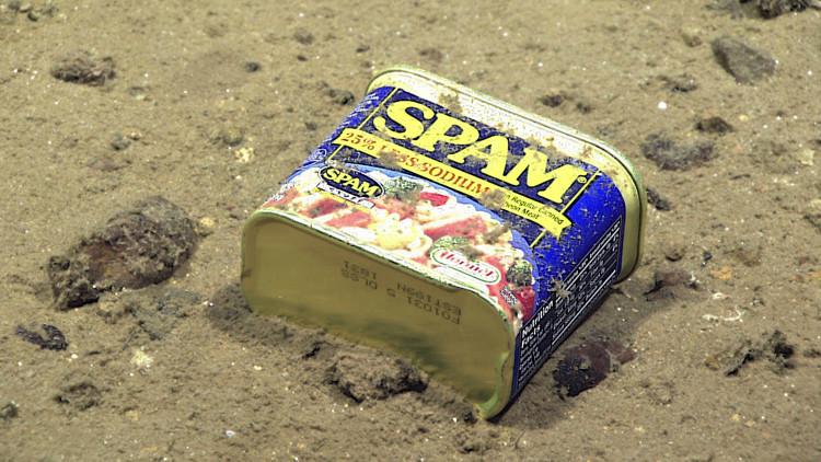 Encuentran latas de conserva en el fondo de la fosa de las Marianas (FOTOS)