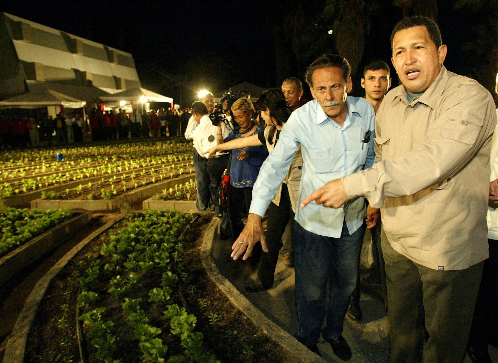 Hugo Chávez haciendo preguntas acerca de la tecnología hidropónica utilizada para cultivar productos en un campo que inaugurado en el centro de Caracas, el 31 de marzo de 2003