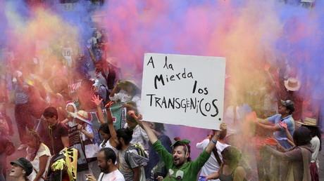 Protestas contra Monsanto en México, 2015.