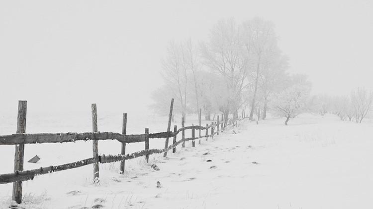 No solo frío: De esta manera llega el verano a Siberia