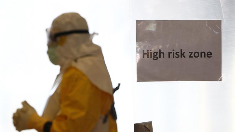 Los científicos sugieren que es posible predecir virus como el ébola y el zika