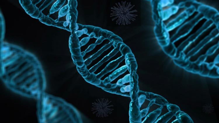 Las bacterias se convierten en una memoria portátil