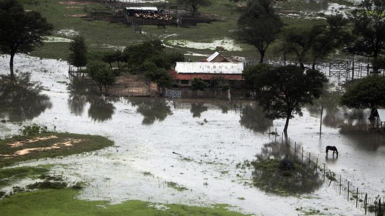 """""""Perdimos el Río Pilcomayo"""": El Chaco paraguayo sufre un posible 'ecocidio' (Fotos, Video)"""