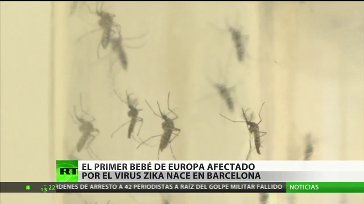 Nace en España el primer bebé con microcefalia causada por el zika