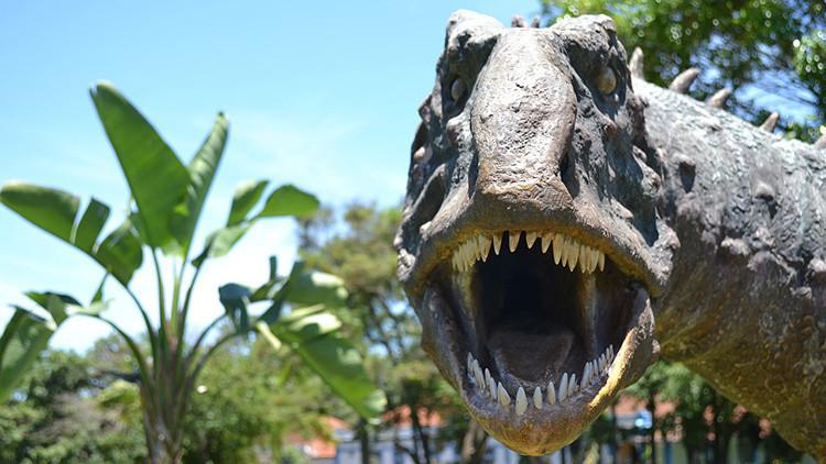 Descubren en Bolivia la huella de un gran dinosaurio carnívoro de 80 millones de años
