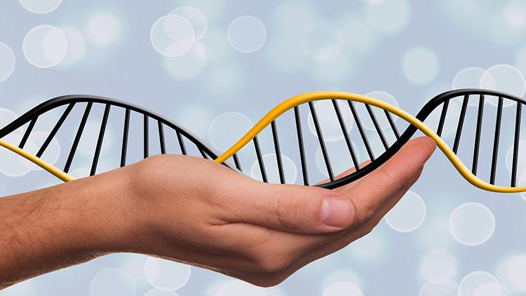 China estrenará la manipulación genética en humanos para combatir el cáncer de pulmón