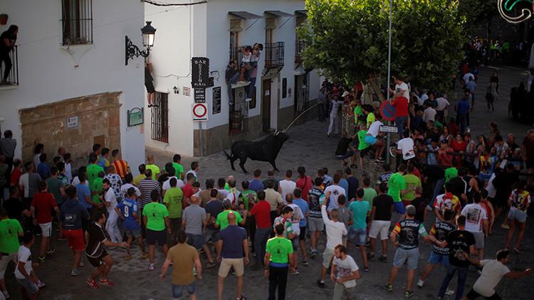 Festival del 'Toro de Cuerda' en Grazalema, sur de España