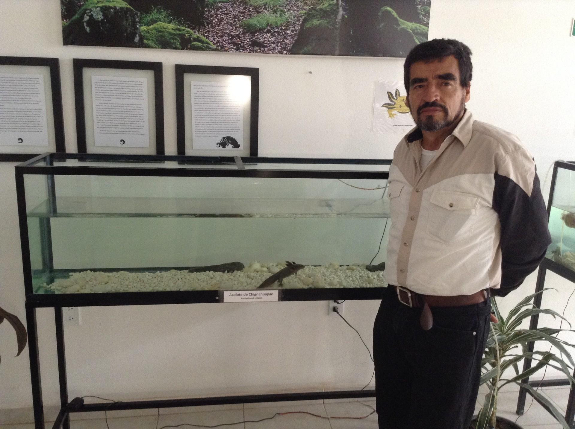 Federico Carbajal y su familia han dedicado los últimos años a la conservación del axolote.