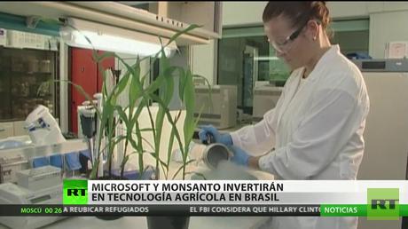Monsanto se suma a un fondo operado por Microsoft en Brasil