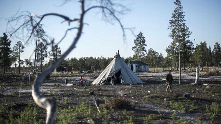 Carbunco: una grave enfermedad se despierta en el norte de Rusia