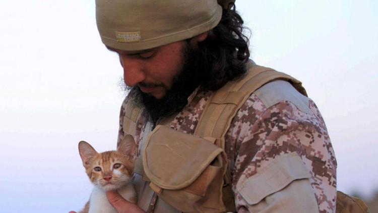 Ternura yihadista: Revista del Estado Islámico publica fotos de los terroristas con gatitos