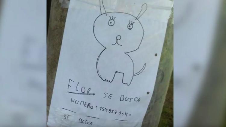 Retrato robot canino: Niños argentinos buscan a su mascota extraviada con un dibujo