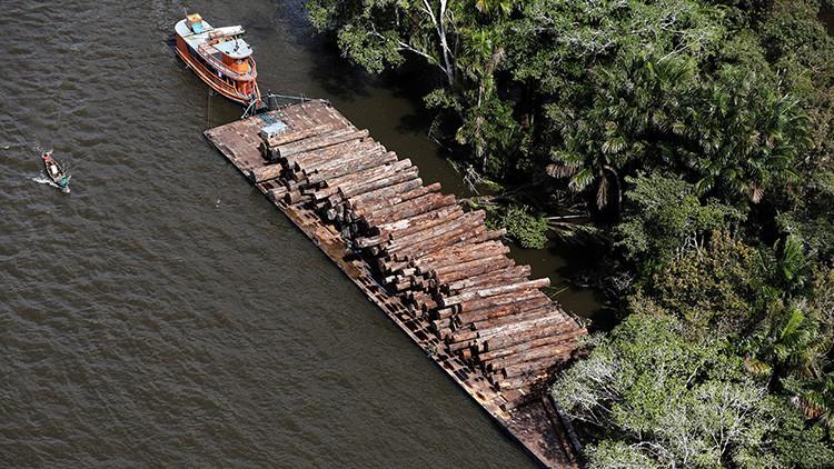 """""""Ganó el medioambiente"""": Detenido un proyecto de presa en el corazón de la Amazonia brasileña"""