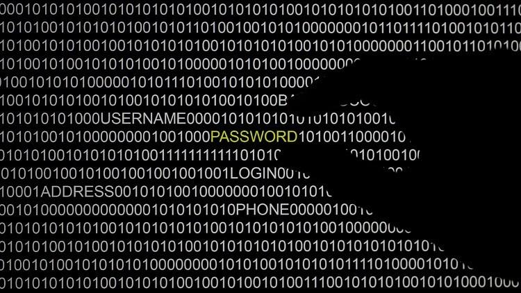 Un 'hacker' publica datos personales de los congresistas demócratas