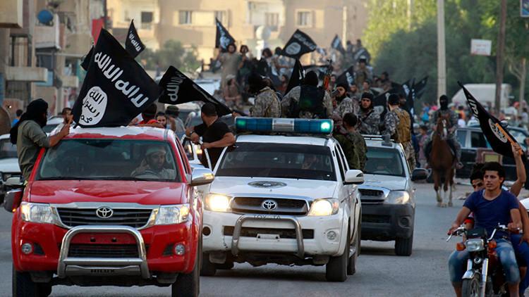 Un lobo que se aprovecha de la ignorancia: revelan que los combatientes del EI saben poco del islam