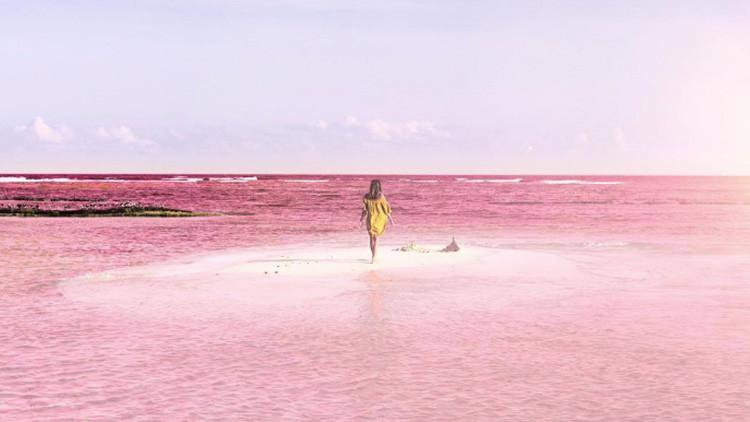 De cuento de hadas: la laguna rosada de México que ha cautivado a la Red con su belleza (FOTOS)