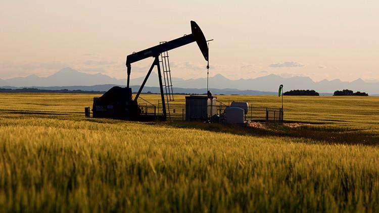 """Inversor estadounidense: """"La agricultura sustituirá al petróleo en la economía rusa"""""""