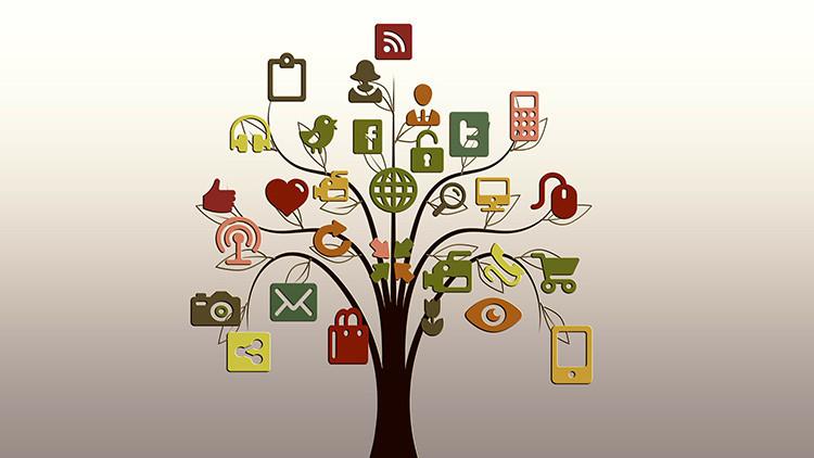 """Estudio revela que los jóvenes ahora se informan por """"accidente"""" en redes sociales"""