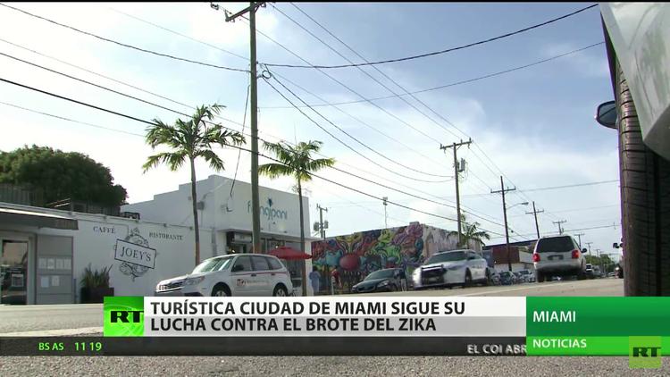 EE.UU.: La turística ciudad de Miami sigue su lucha contra el Zika