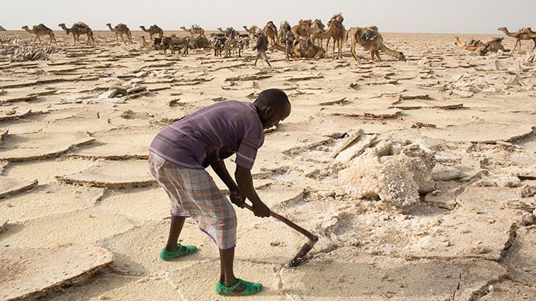 Bienvenido al infierno: cinco euros al día por trabajar en el lugar más caluroso del mundo