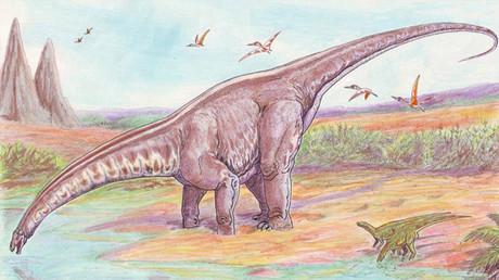 Hallan un dinosaurio desconocido en Rusia