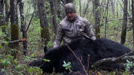 Indignación por el vídeo en el que un cazador estadounidense mata a lanzadas a un oso (18+)