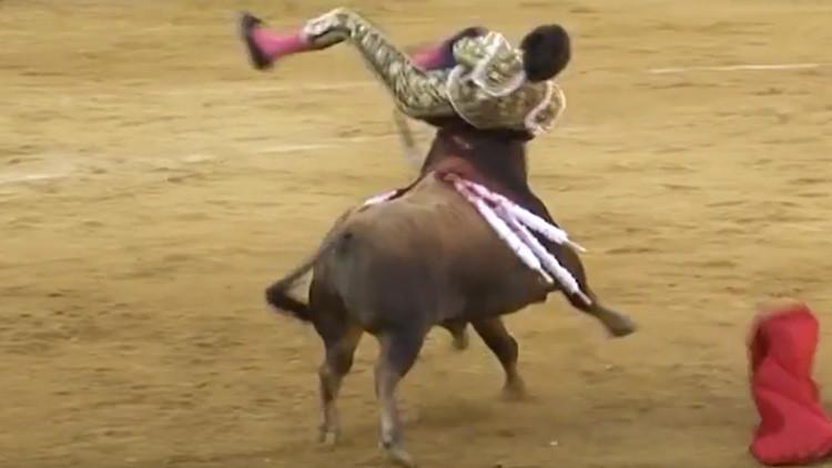 Un torero peruano sufre una grave cogida durante una feria en España (Video 18+)