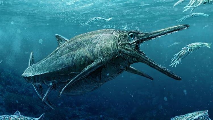 """No es un mito: Presentan a un monstruo marino """"más horripilante"""" que el del lago Ness"""