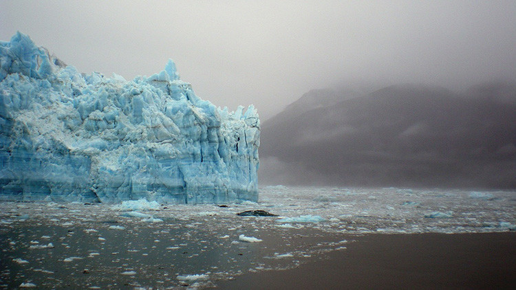 Revelan qué animal se extinguirá primero por el calentamiento global