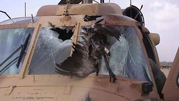 El enemigo más mortal e inesperado de la Fuerza Aérea de EE.UU. en los últimos años