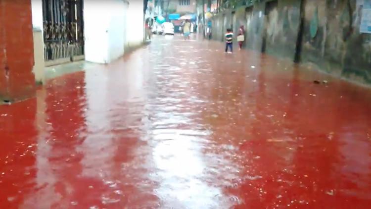 Video, fotos: Aparecen ríos de sangre en Bangladés