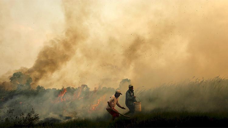 La 'niebla asesina' causa 100.000 muertes en el sudeste asiático en un solo año