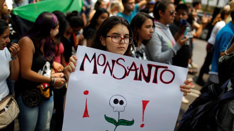 La planta anti-Monsanto que crece de manera silvestre en Venezuela
