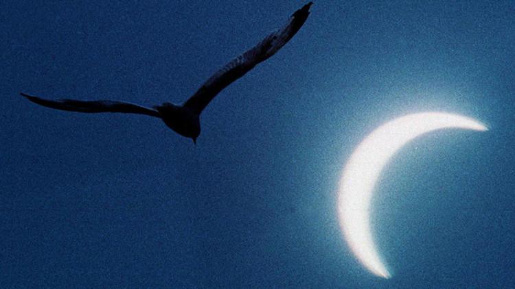 Cancele sus planes para el fin de semana: la luna negra podría ser el apocalipsis