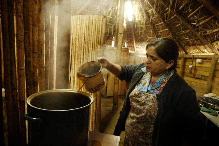 Mujer mapuche prepara hierbas medicinales en el Ruca, lugar donde el Machi atiende a los pacientes