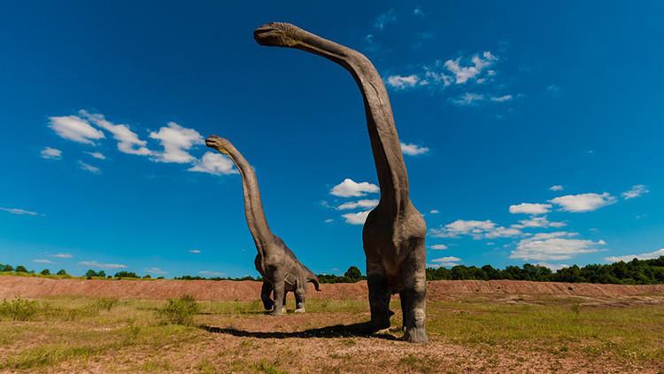 Descubren una de las mayores pisadas de dinosaurios de la historia (FOTO)