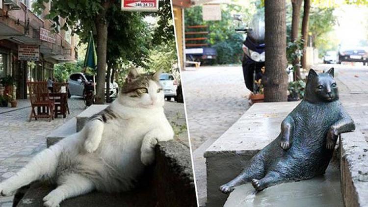 Turquía inaugura una estatua en memoria del icónico gato de Internet