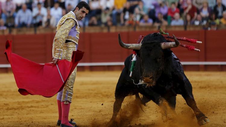 El Constitucional aplaza su anuncio sobre el recurso a la prohibición de los toros en Cataluña