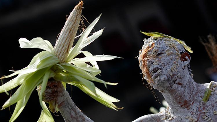 Temer autoriza la mayor importación de maíz transgénico de la última década
