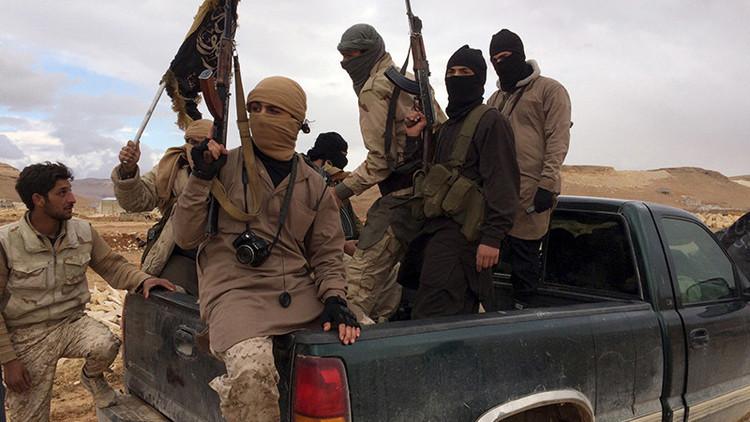 """""""Esquizofrenia e incoherencia"""": ¿Por qué EE.UU combate a Al Qaeda pero no a su filial Al Nusra?"""