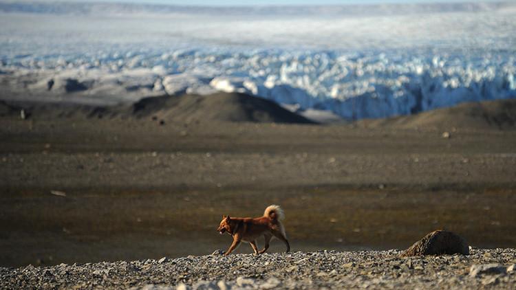 Captan primeras imágenes de dos nuevas islas en el Ártico ruso