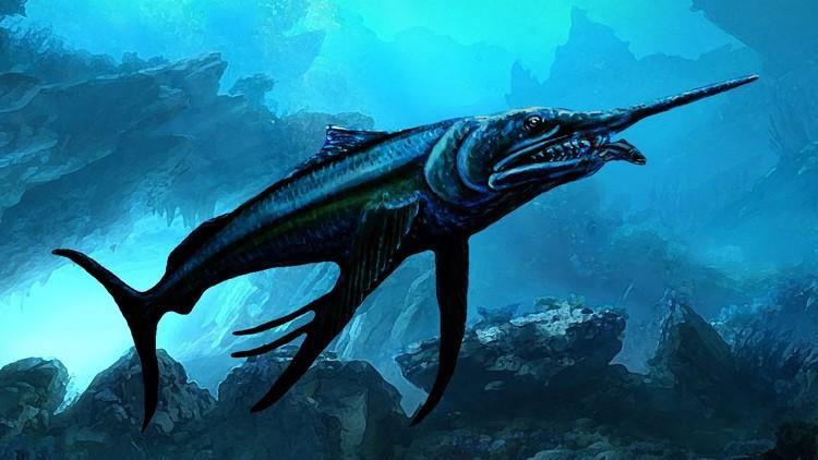 Hallan restos de un pez espada de la época de los dinosaurios