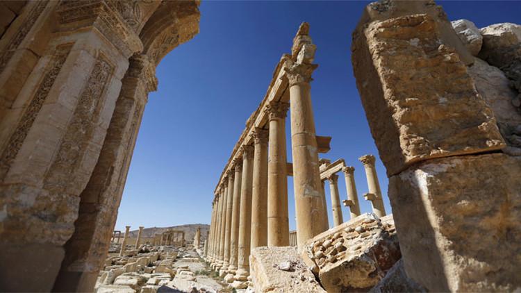 """""""Si Rusia no combate al Estado Islámico, ¿cómo explicar la liberación de Palmira?"""""""